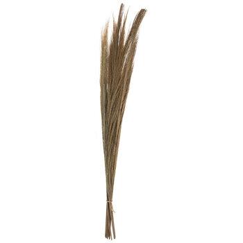 Natural Broom Grass