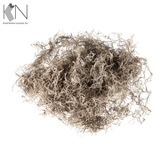 Natural Spanish Moss - 20 Ounce