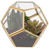 Gold Geometric Succulent Terrarium