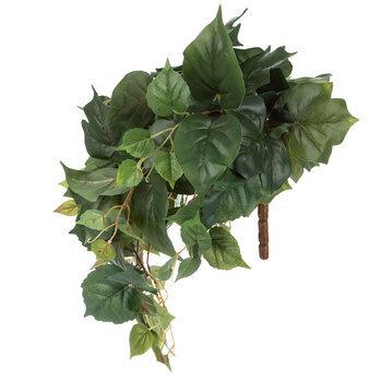 English Ivy & Pothos Hanging Bush