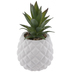 Succulent In White Pineapple Pot