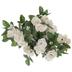Cream Mini Rose Bush