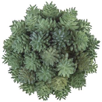Green Succulent Decorative Sphere