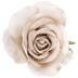 Cream Burlap Rose Pick