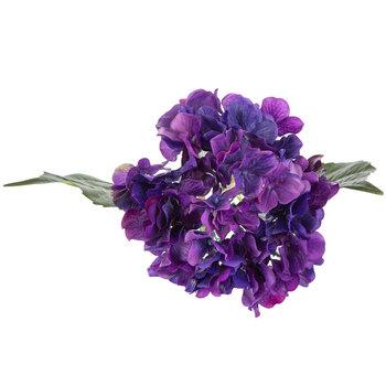 Purple True Touch Hydrangea Stem