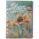 Bloom Undated Planner Inserts - 12 Months