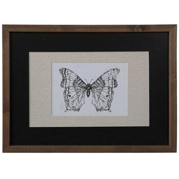 Butterfly Sketch Framed Wall Decor
