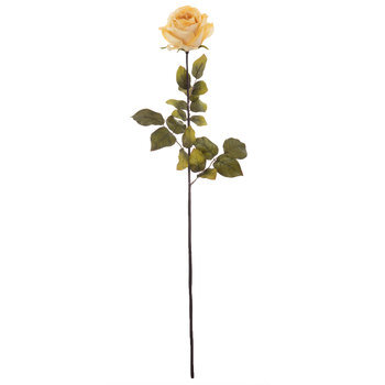 Full Rose Stem