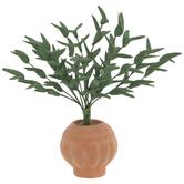 Miniature Potted Ficus Tree