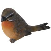 Gray & Orange Bird Looking Left