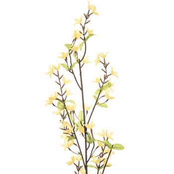 Yellow Forsythia Spray
