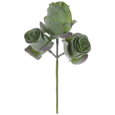 Green Rose Trio Pick