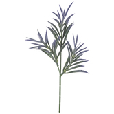 Green & Purple Podocarpus Pick
