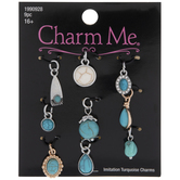 Assorted Imitation Turquoise Charms
