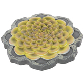 Yellow Succulent Stepping Stone