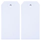 Medium White Blank Tags