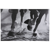 Horse Hooves Canvas Wall Decor