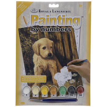 Puppy Blues Paint By Number Kit