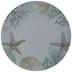 Watercolor Sand Dollar & Starfish Plate