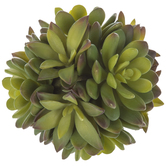 Succulent Decorative Sphere