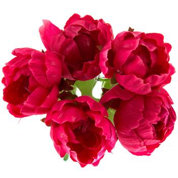 Wild Rose Pick