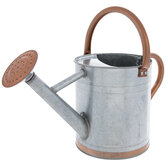 Silver & Copper Metal Watering Can