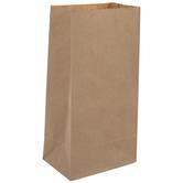 Kraft Paper Sacks - Large