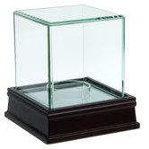 Glass Mirrored Baseball Case