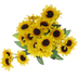 Yellow Mini Sunflower Bush