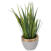 Grass In Gray & Gold Pot