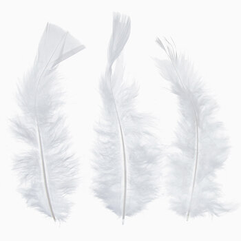 White Feather Fluff