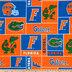 Florida Block Collegiate Fleece Fabric