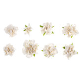 White Marseille Prima Flower Embellishments