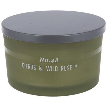 Citrus & Wild Rose Jar Candle