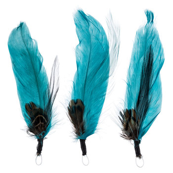 Pheasant & Goose Feathers