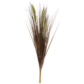 Horsetail Reed Bush