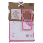 Pink Flower Milestone Blanket