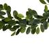 Lemon Leaf Garland