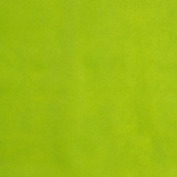 Kiwi Oly-Fun Fabric