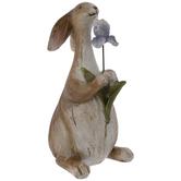 Brown Rabbit With Purple Flower