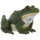 Green Realistic Tree Frog