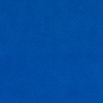 Blueberry Oly-Fun Fabric