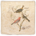 Natural Birds Resting Pillow Cover
