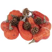 Pumpkins, Gourds & Pinecones