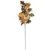 Acorn & Berry Oak Branch