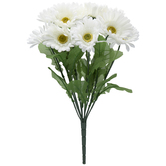 White Gerbera Daisy Bush