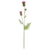 Fuchsia & Green Thistle Stem