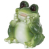 Wide-Eyed Sitting Frog