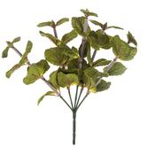 Mint Leaves Pick