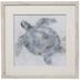 Watercolor Sea Turtle Framed Wood Wall Decor
